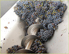 ccv_winery_crusher