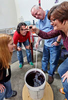 Group making wine
