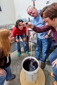 making wine at Curds and Wine