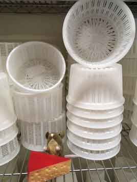 Canestrato and Basket cheese molds